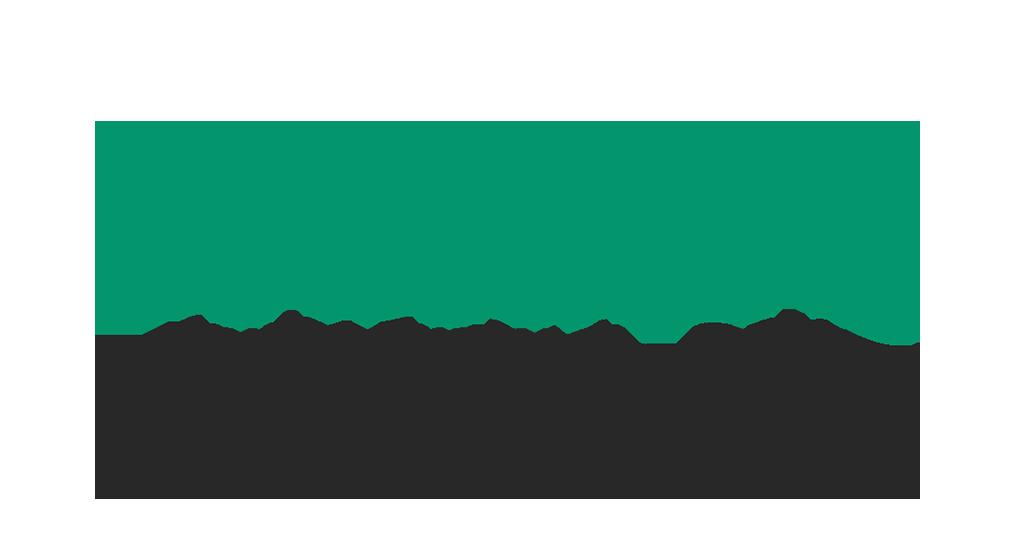 logo-werbeo