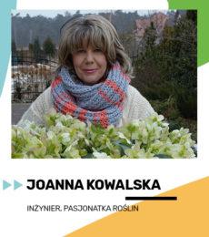joanna kowalska